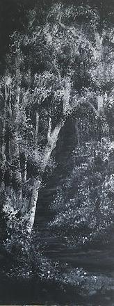 B&W woodland series 4 no 5-min.jpg