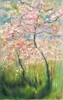 Cherry Blossom 3-min