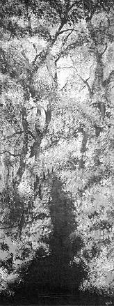 B&W  Woodland series 4 no 9.jpg