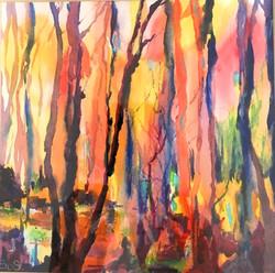 Tree Lights-min
