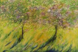 Cheery Blossom 1 -SDS-min