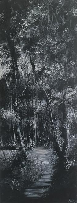 B&W woodland series 4 no 11-min