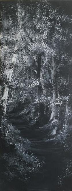 B&W woodland series 4 no 7-min