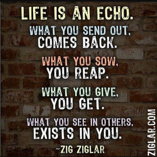 Life is an Echoe
