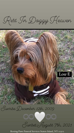 Lou-E