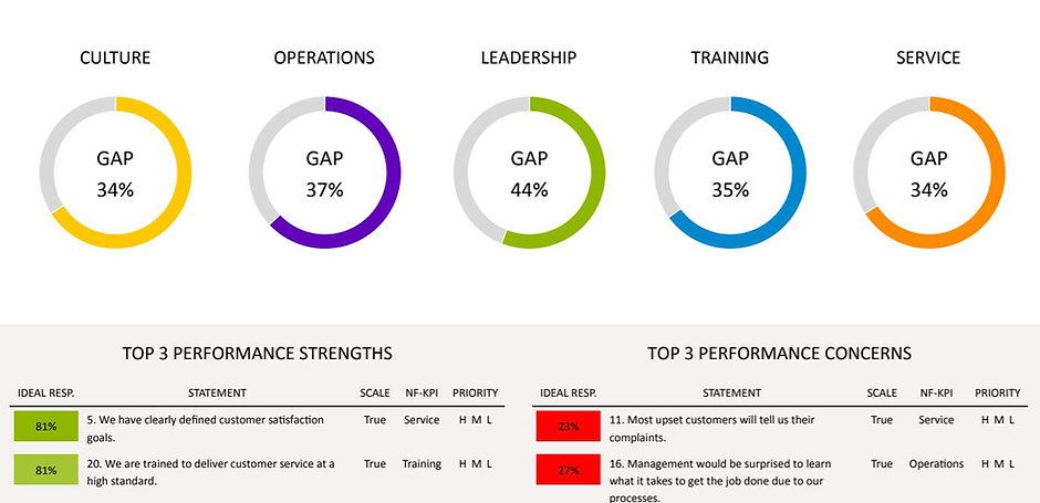 Company and Organization Performance Gaps and ROI Assessment
