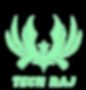 transparent_logo_techraj.png