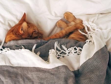 Sleeping position has a direct impact on sleep quality