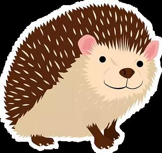 RWC Hedgehog Character.webp