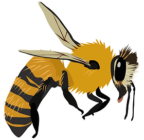 bees@300x.png