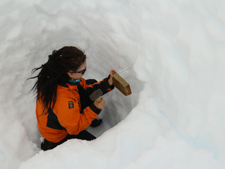 There is much more to Antarctic snow than we thought!