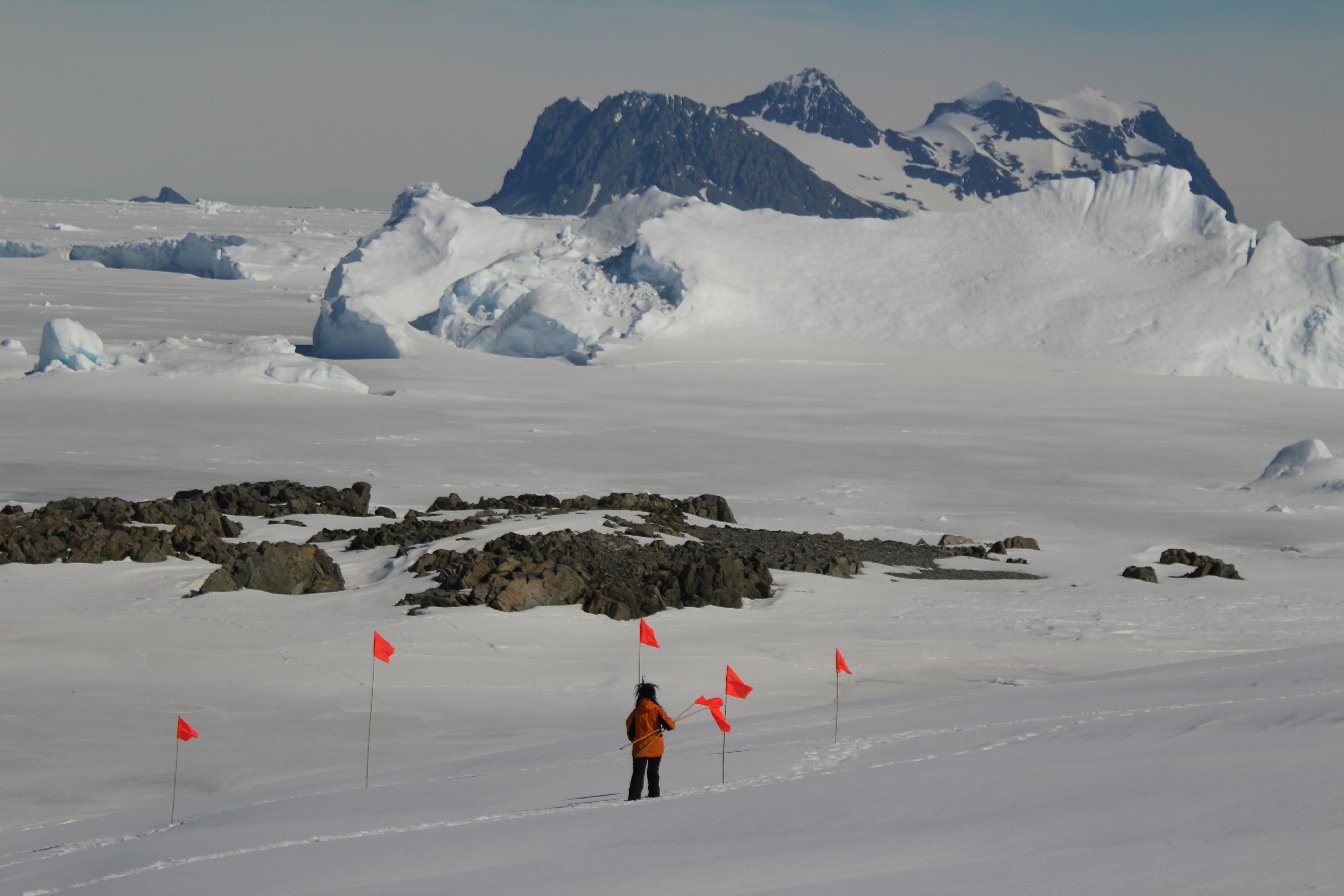 Characterising Antarctic snowpack