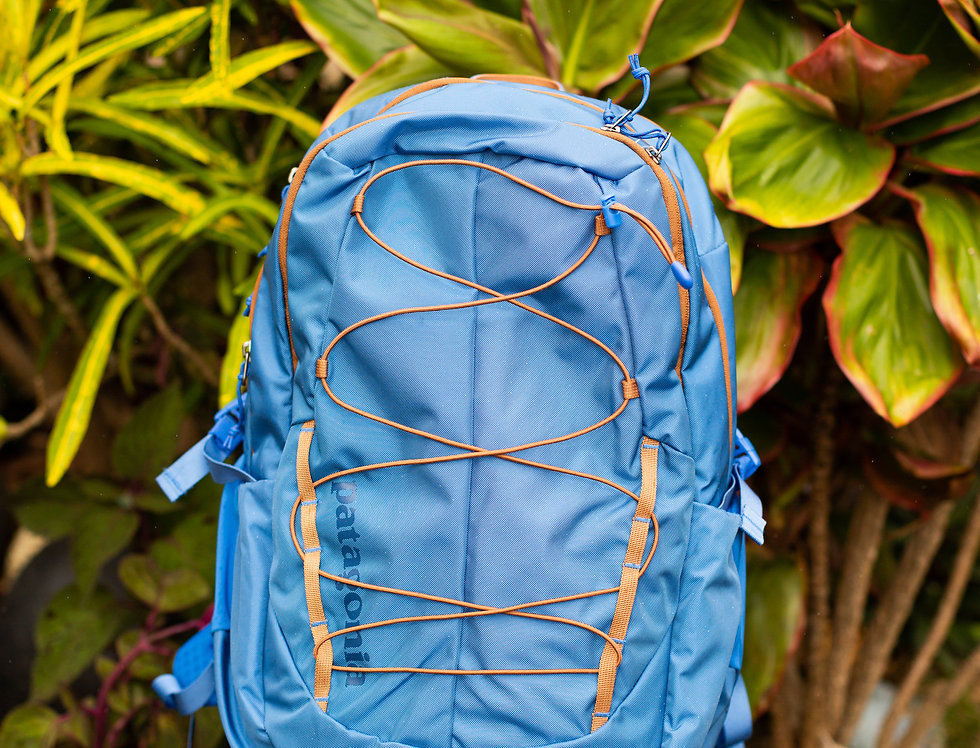 """Patagonia """"Chacabuco"""" Backpack"""