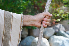 Picture of a shepherds staff