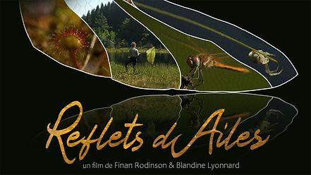 AfficheProg_credit_Finan Rodinson.jpg