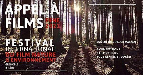 appel-a-films_fifne2021.jpg
