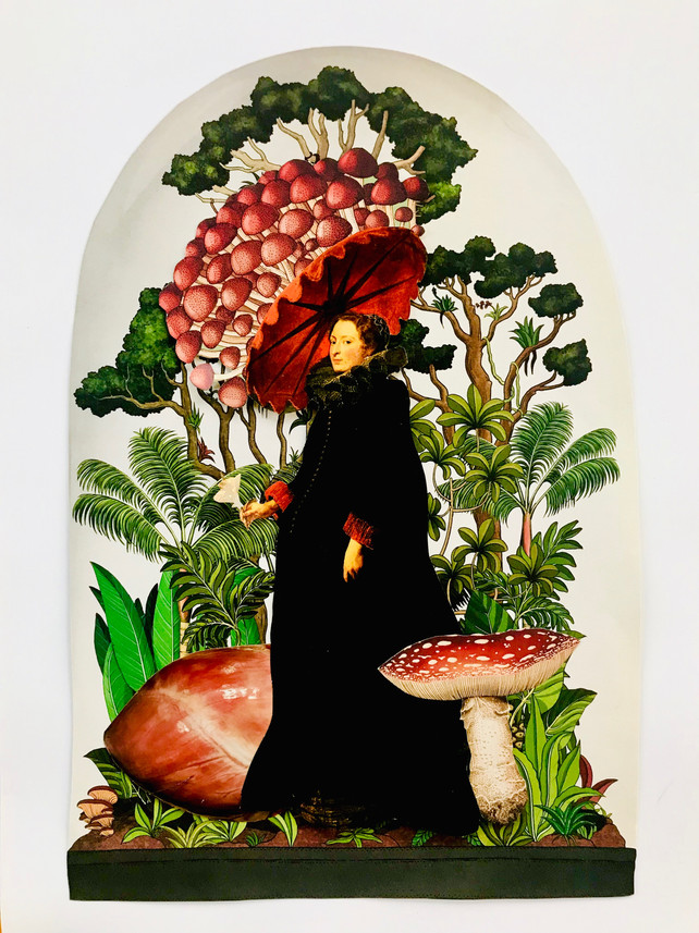 Terrarium with Heart of Amateur Mycologi