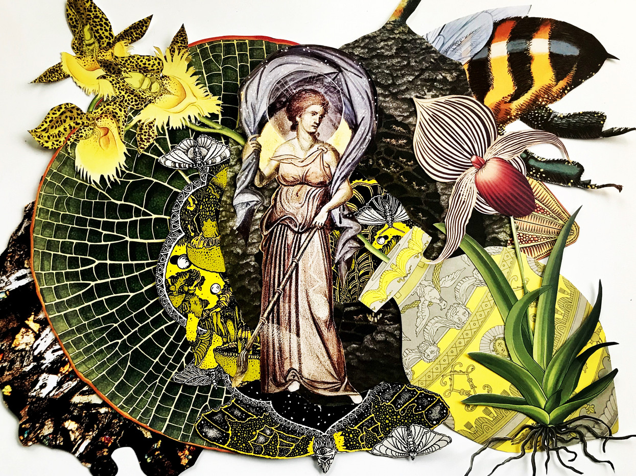 Pollination Queen.jpg