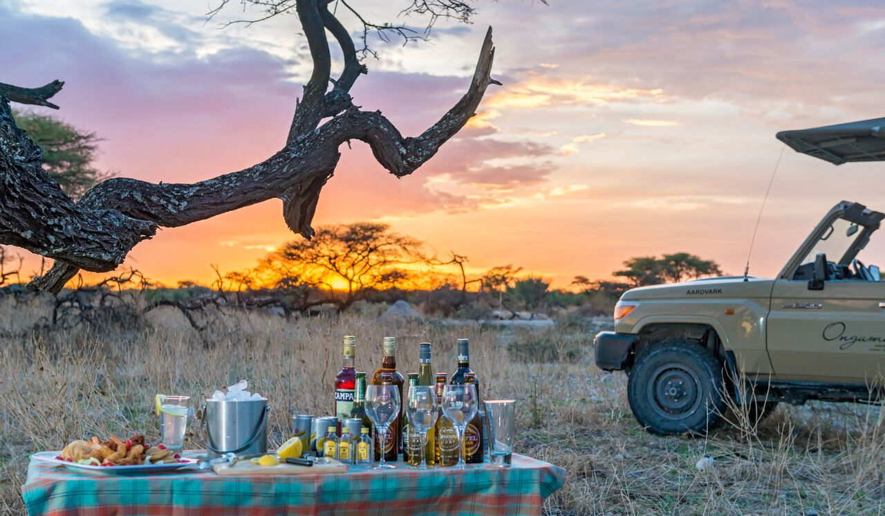 Onguma Game Drives
