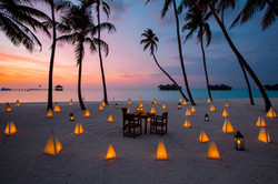 Destination Dining at Palm Beach