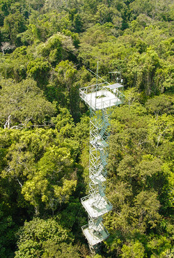 Cristalino Jungle Lodge - Aerial View of Canopy Tower - Jorge Lopes