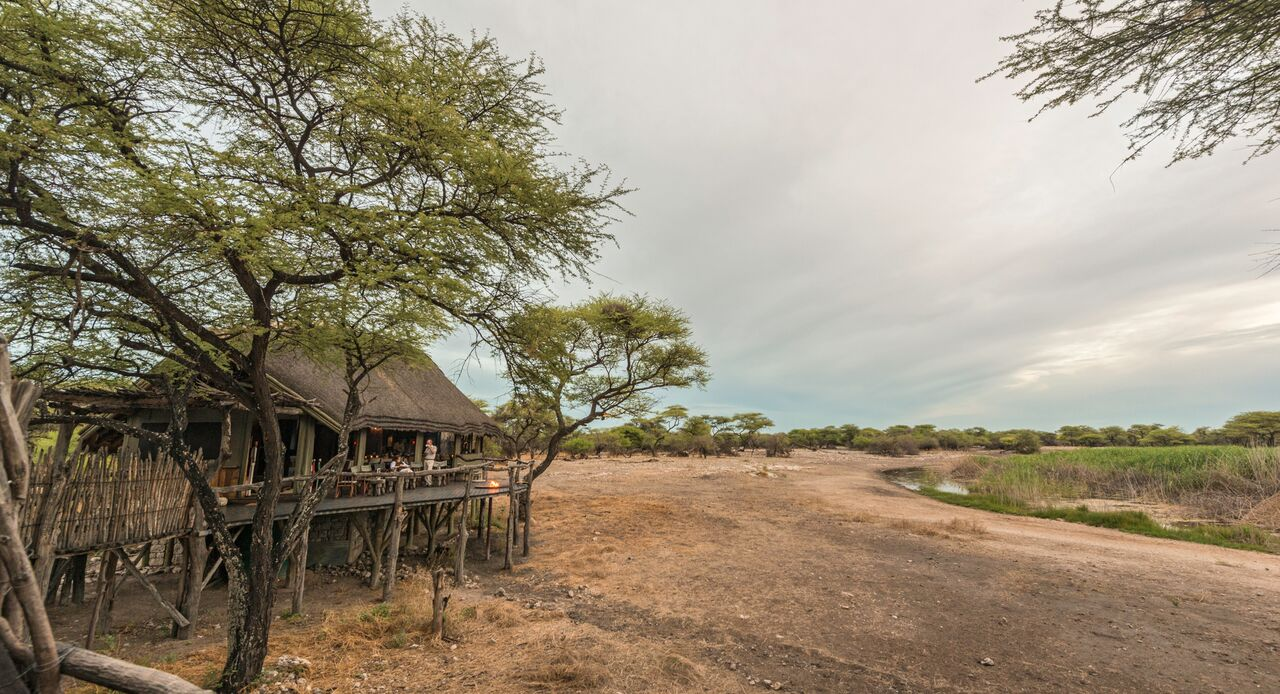 Onguma Tree Camp