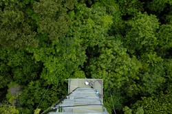 Cristalino Jungle Lodge - View from the Canopy Tower - Katia Kuwabara