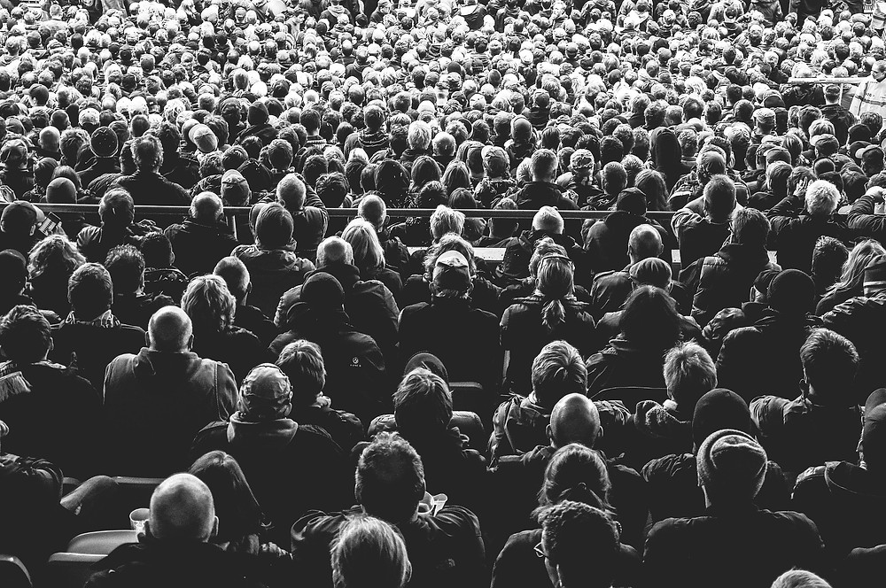 black and white image of audience from the back