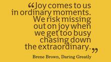Ordinary Risk Extraordinary Joy