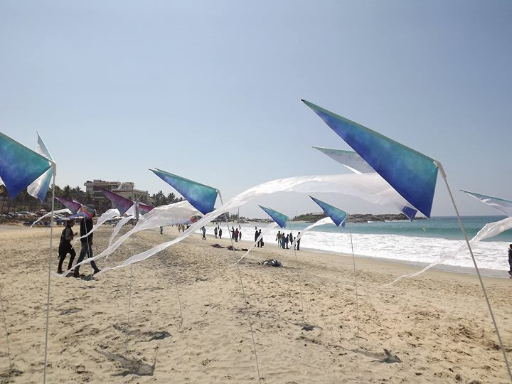 Falenas on the beach in India