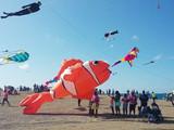 March 29th, 2021 Kite Newsletter