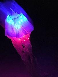 LED Nite Kite