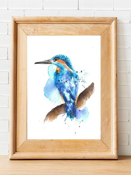 Splatter Kingfisher Print