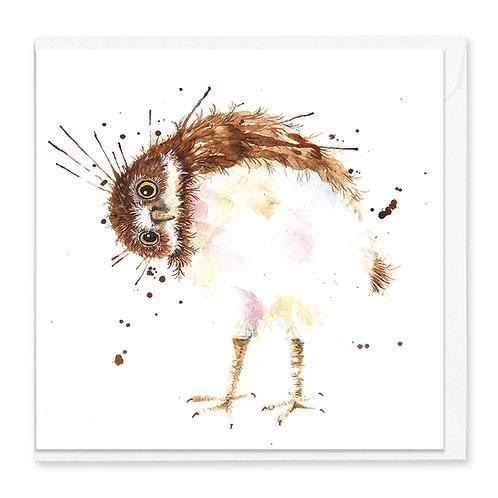 Silly Splatter Owl