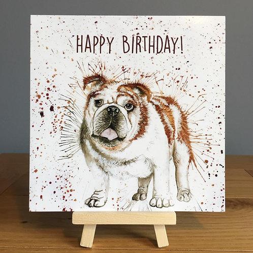 Bulldog Happy Birthday Card