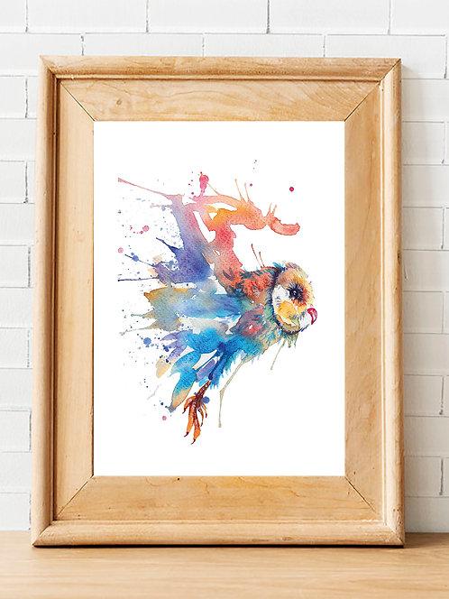 Coloured Swoop Print