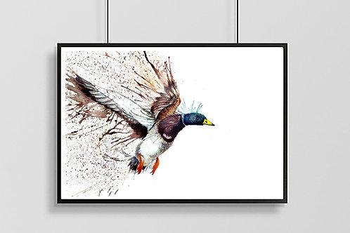 Inflight Splatter Duck Print