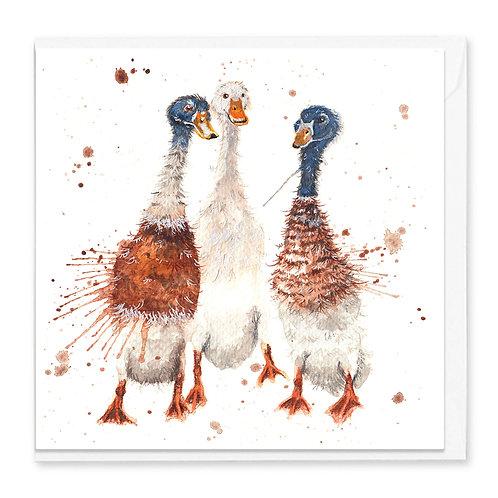 Gossip Time Greeting Card