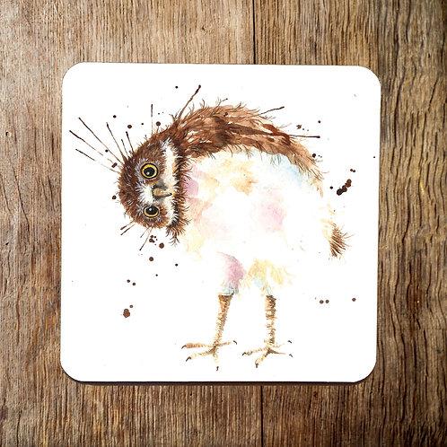 Silly Splatter Owl Coaster