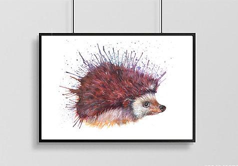 Mr Prickles Hedgehog Print