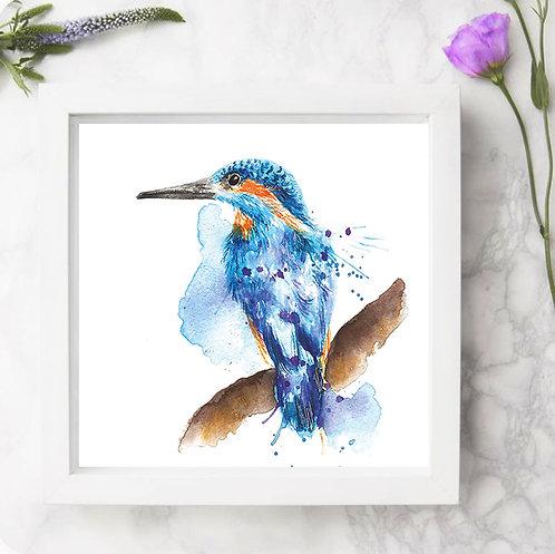 Splatter Kingfisher Mini Framed Print