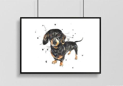 Splatter Sausage Dog Print