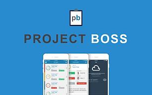 Project Boss App