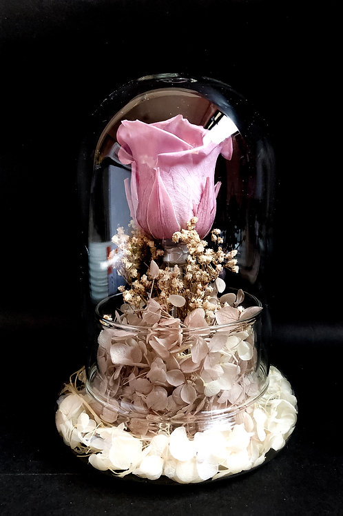 Preserved Rose in Glass Dome - Classic Edition in Lilac (NEW)