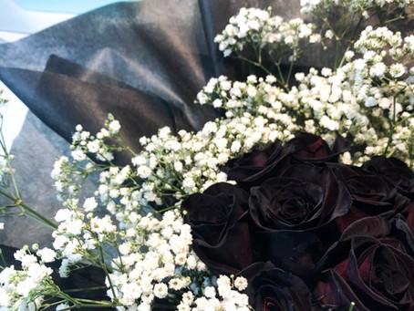 Black Ecuador Roses