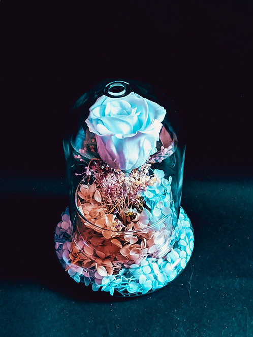 Tiffany Blue - Preserved Rose and Hydrangea in Clear Glass Dome
