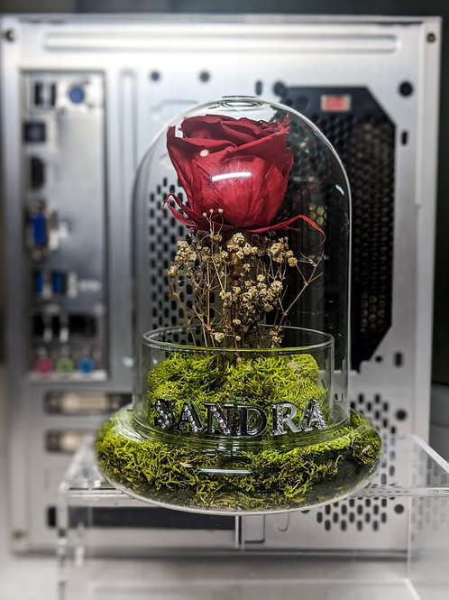 Deep Red with swarovski crystal Name Charms - Preserved Rose in glass dome
