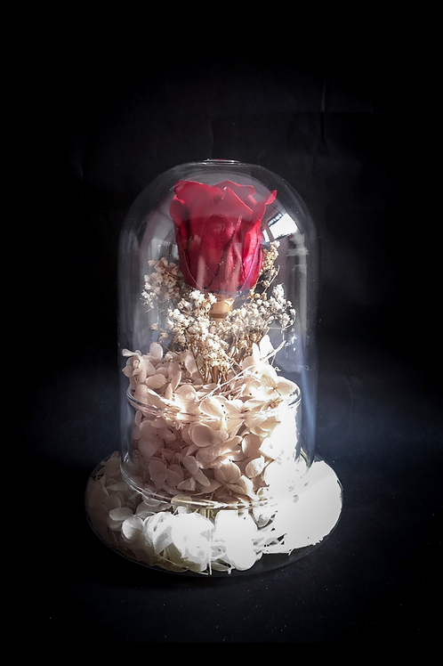 Dark Red Edition - Preserved Rose in Glass Dome with Hydrangeas (New Collection)