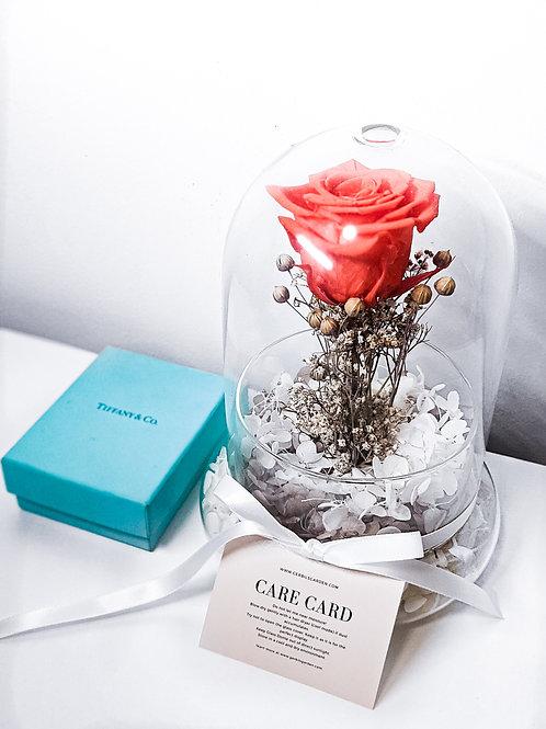Red Jasper Preserved Rose in Glass Dome