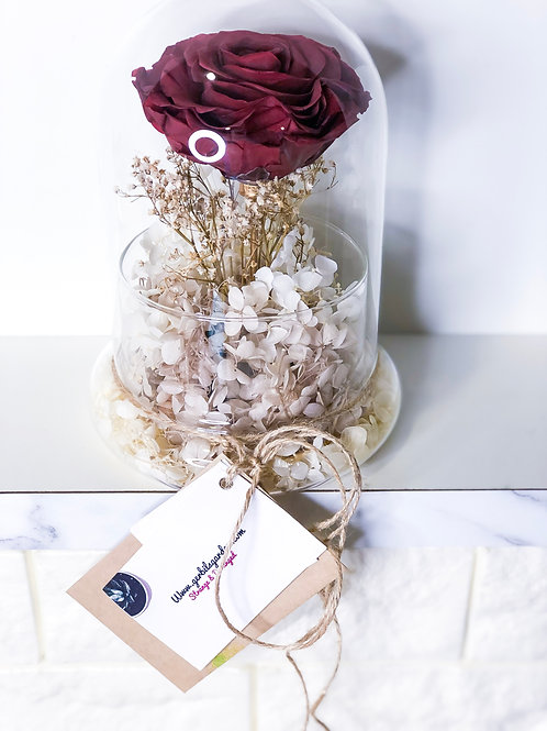 Large Edition - Preserved Rose and Hydrangea in Glass Dome Dull Red Deluxe